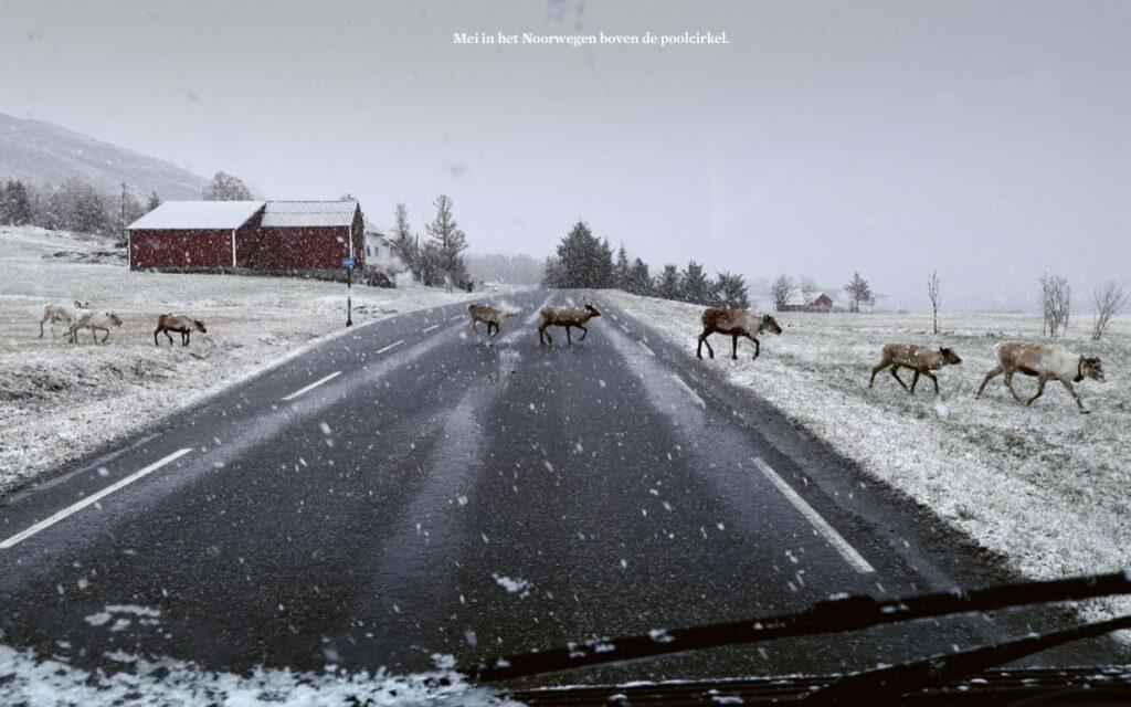55° Noord 2021 Noorwegen